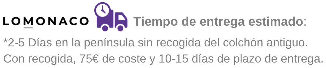 Lomonaco%20Tiempo%20de%20entrega.png