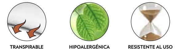 hflexPRIMA%205.png